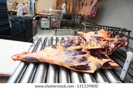 meat in conveyor of meat factory