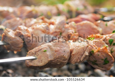 Meat on the skewers grilling over charcoal