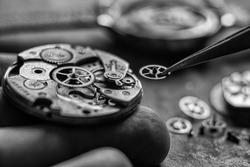 Mechanical watch repair. Watchmaker's workshop. Hihg accuracy level