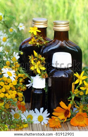 Medical herb with aromatherapy essential oil and tincture in glass bottle.