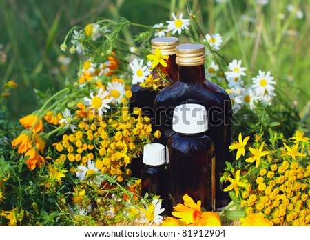 Medical herbs with aromatherapy essential oil and tincture in glass bottle.