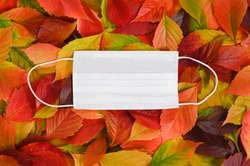 Medical mask on background of colorful autumn leaves. Top view.