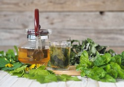 Medicinal herb. Herbal tea with a teapot with useful herbs and plants prepared for drying. Spring preparations of medicinal herbs for the future.