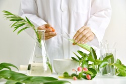 Medicinal herbal plant analysis, Natural organic botany drug research and development, Scientist formulating plant derived supplement medicine, Alternative traditional herbal remedies.