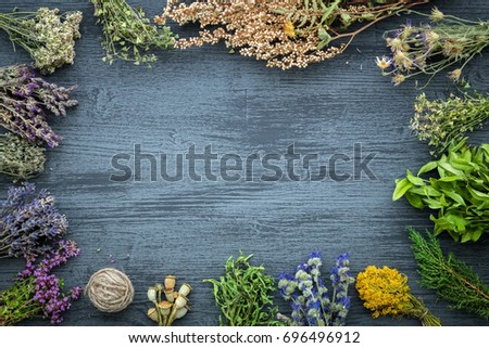 Medicinal herbs bunches on gray wooden board with copy space for text. Herbal medicine. Top view, flat lay.