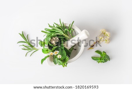 Medicinal herbs in mortar with pestle isolated on white background. Top view. Herbal medicine concept. Photo stock ©