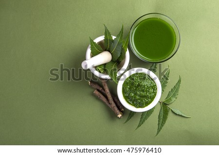 Medicinal Neem leaves in mortar and pestle with neem paste, juice and twigs on green background #475976410