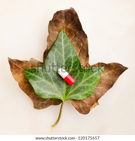 Medicine over green leaf on top of a dried leaf symbolizing vitality