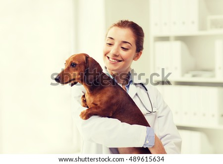 medicine, pet, animals, health care and people concept - happy veterinarian or holding dachshund dog at vet clinic