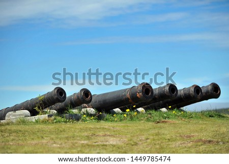 Medieval cannons defending the bay from enemy ships in St. John's #1449785474