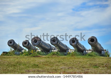 Medieval cannons defending the bay from enemy ships in St. John's #1449785486
