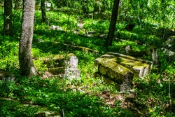 Medieval cemetry overgrown by forest. Sunlight illuminates three tombstones covered by green moss among many others. Shot near ancient city Chufut Kale, Bakhchisaray, Crimea