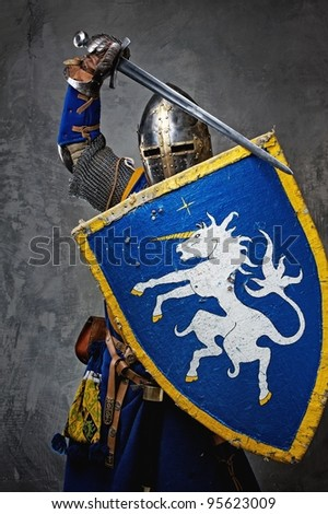 Medieval knight on grey background.