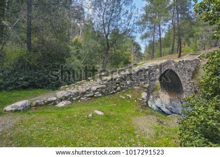 medieval venetian bridge in the ...