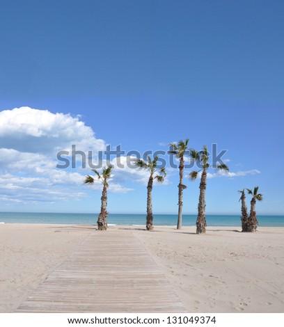 Mediterranean Beach in Costa Blanca San Juan Alicante Spain Europe