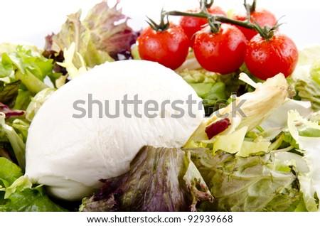 mediterranean breakfast with mozzarella, salad and tomatoes