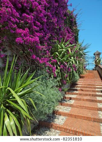 mediterranean garden stairs