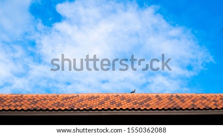 Mediterranean roof against blue  sky background. Close up of brown clay roof tiles. Red old dirty roof. Old roof tiles. Close-up aerial view of the traditional red Mediterranean roofs