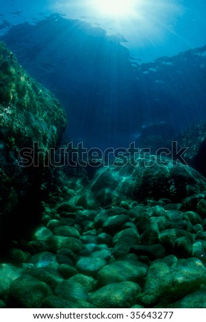 Mediterranean seabed, in the background the sun's rays