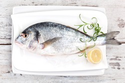 Mediterranean seafood concept. Fresh sea bream on white plate with lemon and rosemary on white wooden textured background.
