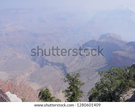 Medium wide view of the Grand Canyon National Park from the South Rim on a hazy day with smoke from a wildfire, with green treetops in the foreground.
