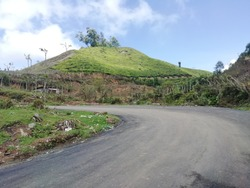 Medows in munnar hillstations tea plantations