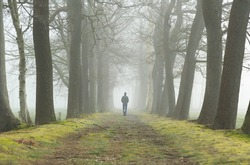 Melancholy emotions concept: man walking alone in a lane on a foggy, spring morning.