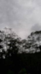 MELAWI, INDONESIA - JUNE 21th, 2020 - Dark sky view, with cloudy clouds and dark trees and plants, with added blur and dark effects