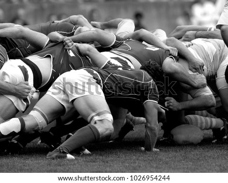 melee during a rugby match