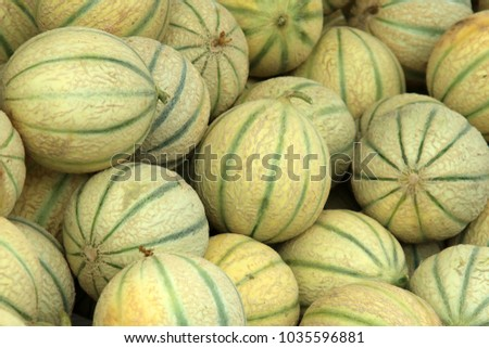 Melon, stripes, fruit, Galia melon