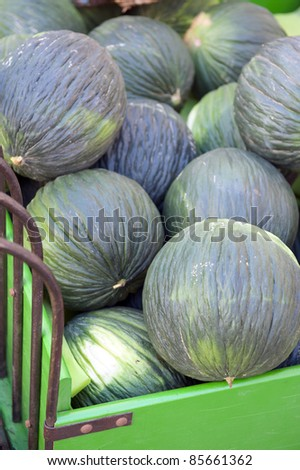 Melons at the market place. Details at the market - stock photo