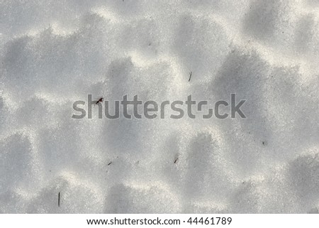 melting snow background close up
