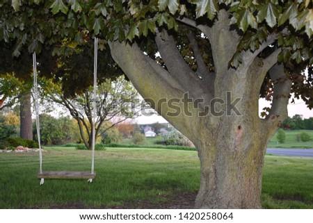 Memories of Grandmas Tree Swing