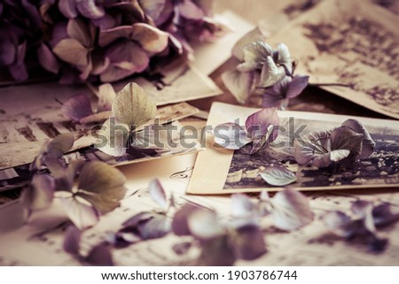 Memories - old and antique family photos  dated to 1930 with old photo album and music notes with dried flowers in vintage style ストックフォト ©