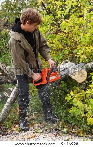 Men with chainsaw cutting tree