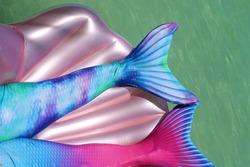 Mermaid tail fins in the ocean. Two mermaid fins floating on a seashell in the ocean