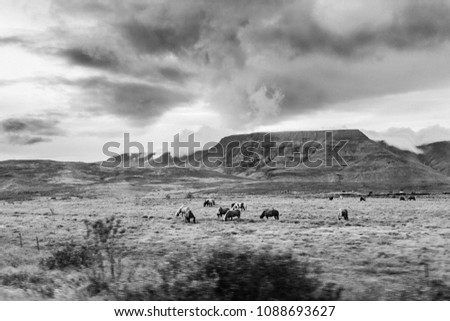 Mesa rock formations stand in the distance behind a herd of horses while a dark cloudy sky hangs above.