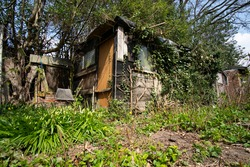 Messy untidy garden shed example