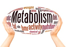 Metabolism word cloud hand sphere concept on white background.