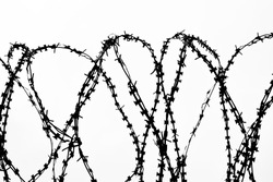 Metal barbed wire isolated on white background, silhouette of barbwire
