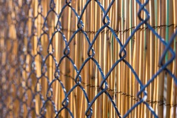 metal fence background with bamboo privacy protection behind. sunny day, closeup, detail, horizontal