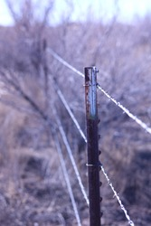Metal Fence Post With Barbedwire
