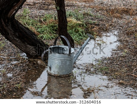 Metal garden watering can in pool of rain water on gray afternoon/Garden Watering Can of Gray Metal stands in Puddle of Rain Water on Wet Cloudy Afternoon/Grey watering can in rain puddle