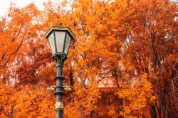 Metal lantern on the background of the autumn trees. Autumn scene