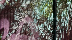 Metal mesh netting in the shade of trees