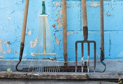 Metal rakes, hoes, and pitchforks stand against a blue wall covered in cracked paint.