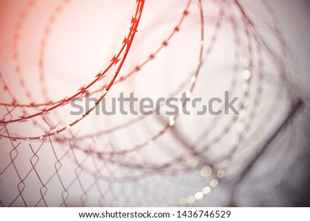 Metal sharp barbed wire, twisted in a spiral on the mesh fence, with spikes and blades highlighted in red, which shows its sharpness and danger
