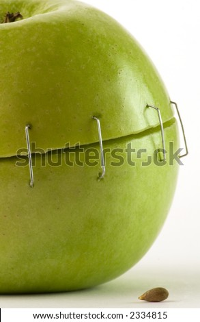 metal staples green apple seed over white