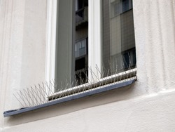 Metal (steel) bird spikes on the windowsill. Reliable protection against birds, especially pigeons. Anti bird wire.