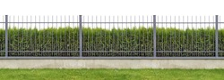Metal village mass production  long gray fence  isolated panorama collage. Behind the fence is growing evergreen hedge of Thuja tree.